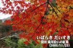 袋田 滝川沿いの紅葉