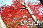 花貫さくら公園 バーベキュー広場の紅葉