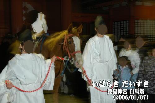 鹿島神宮 白馬祭