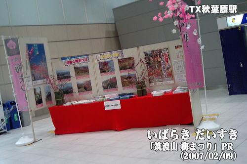 「筑波山梅まつり」PR_TX秋葉原駅
