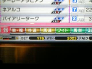 WBCT2000枚