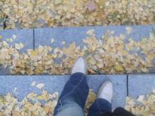 落ち葉を踏みしめる