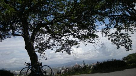 20090713.jpg