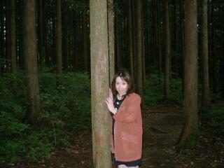 白神山地の森林の中で