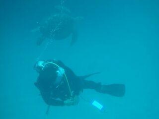 20111022ダイアナ海亀と酒井さん