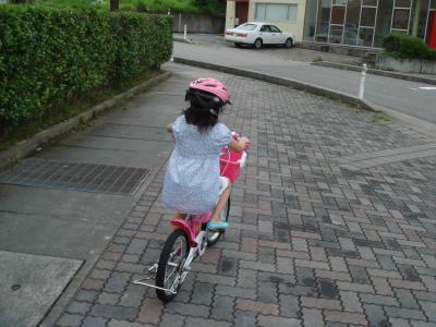 完璧自転車_convert_20090718214012