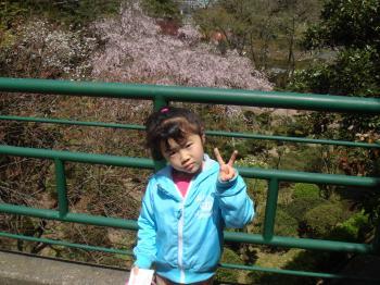 sakura_convert_20090418191410.jpg