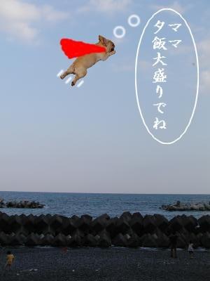いなちゃんマン
