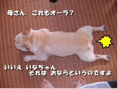 P1010034-1_convert_20090928140424-2.jpg