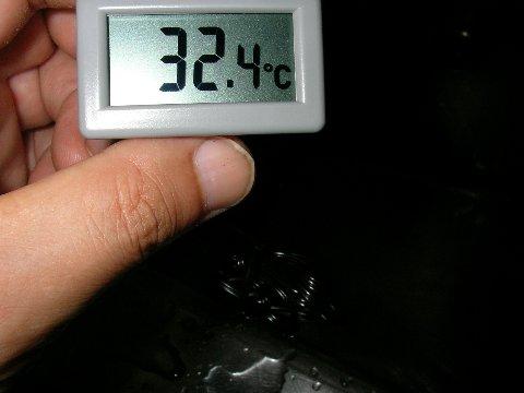 手作り温水器のお湯の温度2