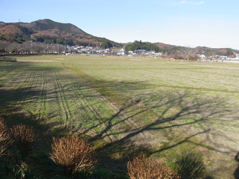きれぎれの風彩 「巾着田の初冬」01コスモス畑