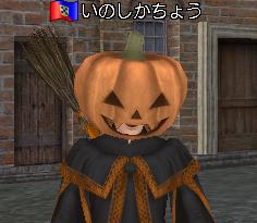 いのしか・かぼちゃ+魔法使い・上半身