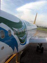 これがCebuPacificの機体、色使いなかなか素敵ぢゃない