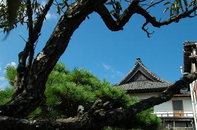 鎌倉・雷亭200831 095-1