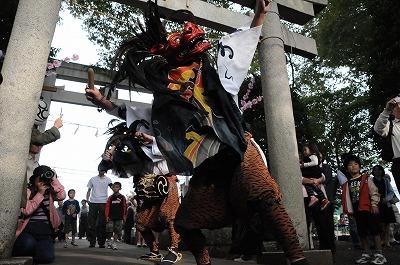 20081018.s19祭りしし 052-1