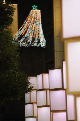 2008113太陽展・六本木 007-1