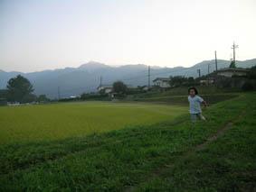 金色の野2