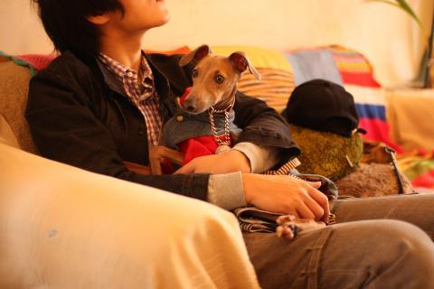 maru3_20110212113043.jpg