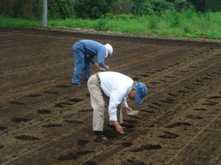 20097.5大豆種まき