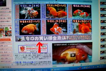 2012.1.18ブログ (5)