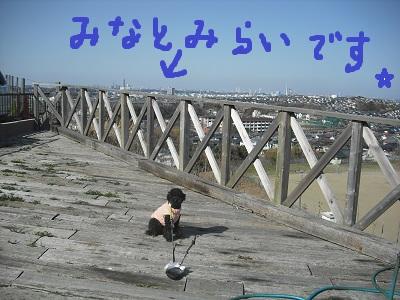 CIMG2140.jpg