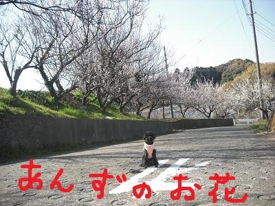 CIMG2142.jpg