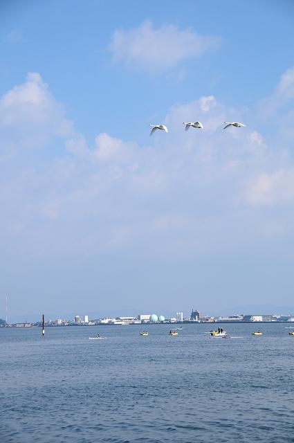 錦海ボートコース