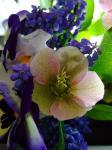 080409SSモーブピンクとムスカリの花束3