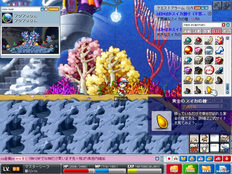 Maple0000_20080808010149.jpg