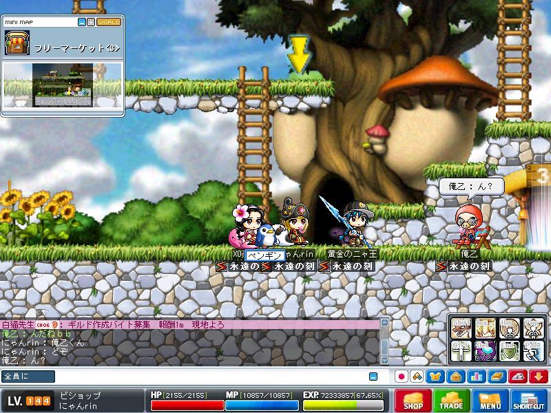 Maple0002_20080817051659.jpg