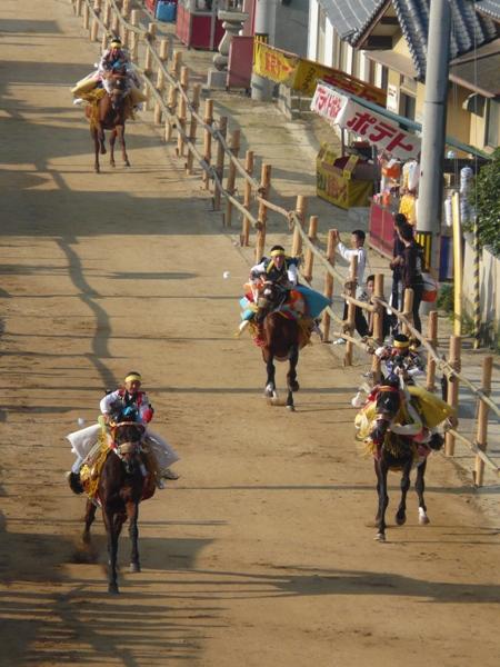 お供馬の走り込み 1