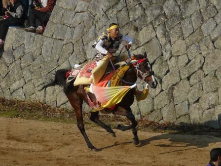 お供馬の走り込み 4