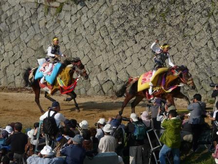 お供馬の走り込み 5