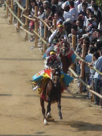 お供馬の走り込み 6