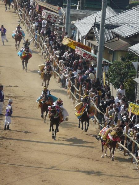 お供馬の走り込み 8