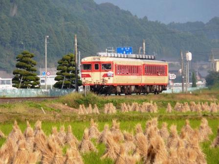 キハ58・65 急行 「うわじま」 1