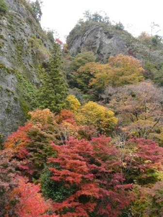 礫岩峰と紅葉 6