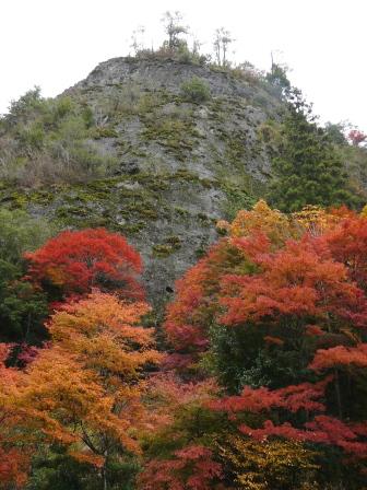 礫岩峰と紅葉 2
