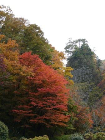 礫岩峰と紅葉 1