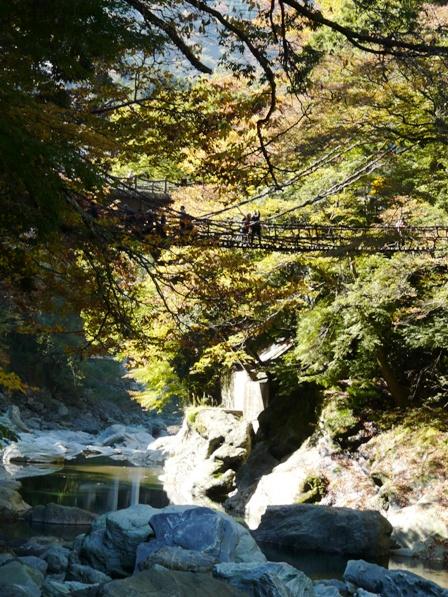 祖谷のかずら橋 5