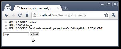 cgi-cookie-2.png