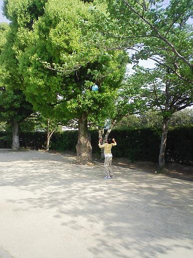 木に当てるなぁ~~~!!