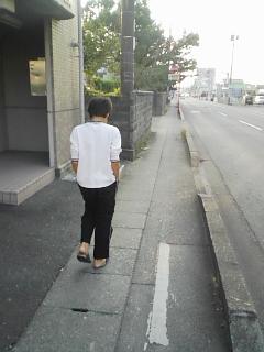 お散歩 光