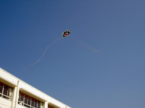 この凧が最高度・・・