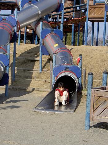公園はサイズが・・・