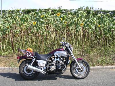 2008_0826_090427-DSCN2582_convert_20080830005619.jpg