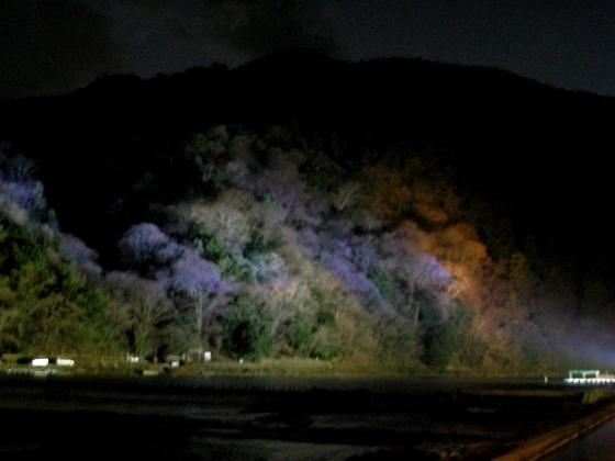嵐山花灯篭 018
