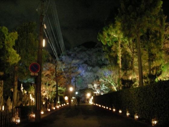 嵐山花灯篭 050