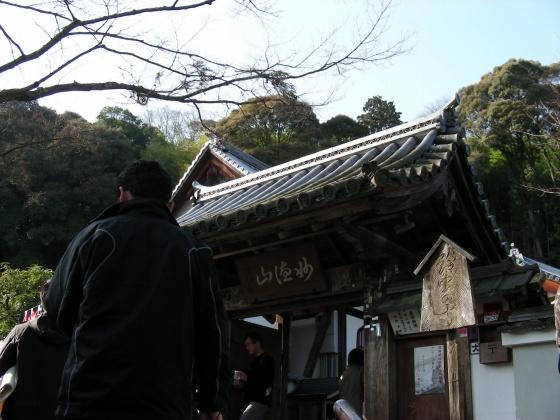 鈴虫、竹林寺 167