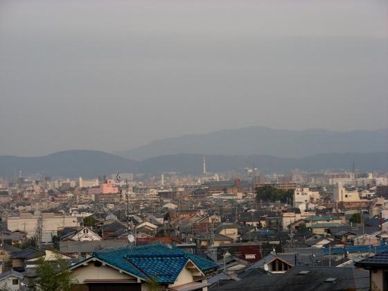 月読、京田辺 074